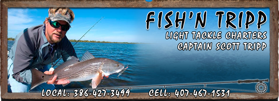 Mosquito Lagoon and New Smyrna Beach Light Tackle Fishing Charters with Captain Scott Tripp