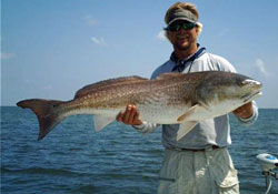 Scott with a big Mosquito Lagoon Redfish